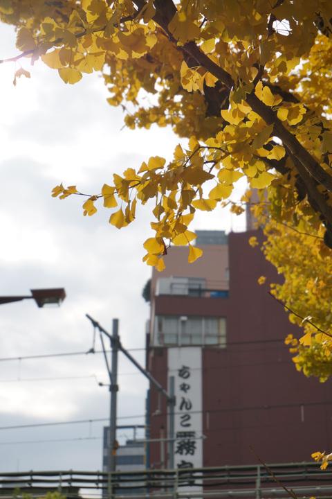 更けゆく江戸の秋