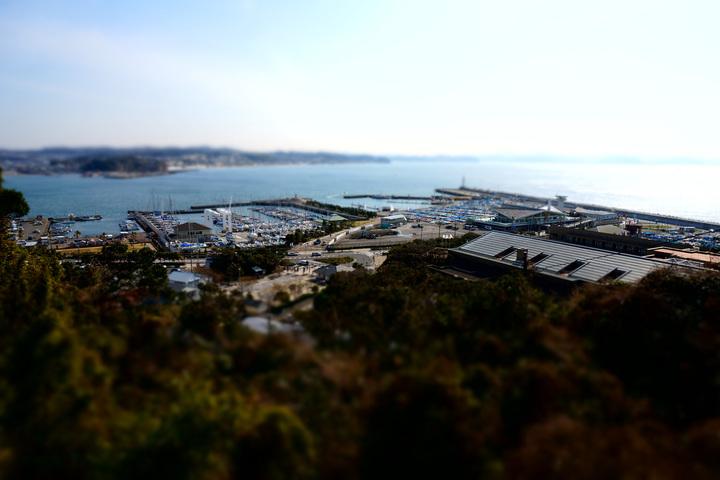 enoshima miniature